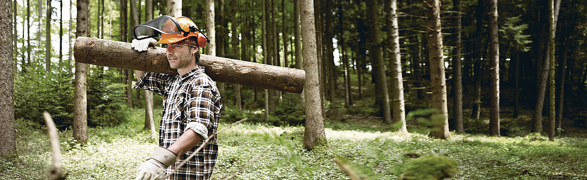 SWISS KRONO is an international group and employer within the wood industry